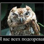 Ilya_Bobrov