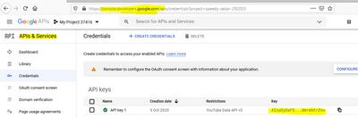 Google API.PNG