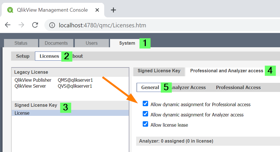 allow dynamic licenses.png