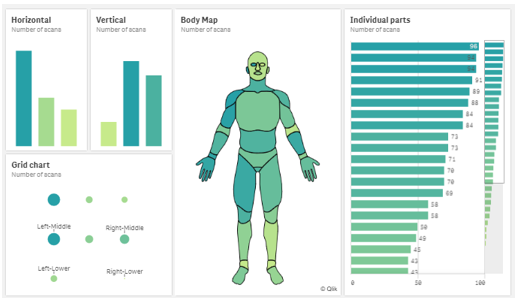 Qlik Body Map app